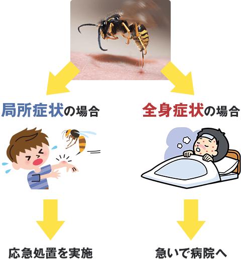 蜂 に 刺され た 時 の 対応